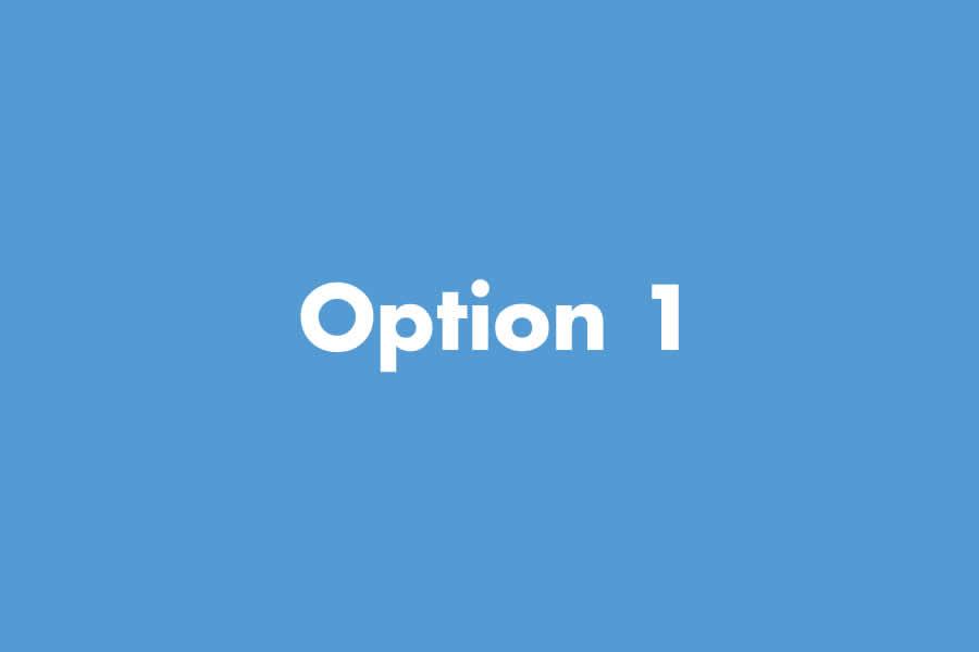 Pricing Option 1